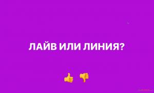 stavki-dlja-novichkov-live.png