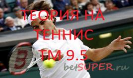 Теория на теннис ТМ 9,5