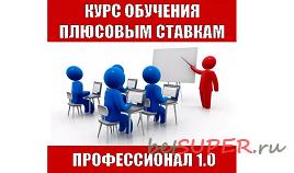 Курс Профессионал 1.0